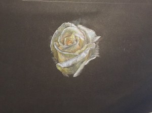 Colour Pencil Practice, 24th of December, 2014